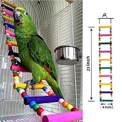 Bello Luna Rainbow Parrot Ladder Flexible Wooden Swing Toys for Bird 3