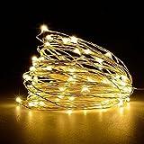 Weihnachtsbeleuchtung, Acelive 10M 100er IP65 Wasserdicht LED Kupferdraht Lichterkette Warmweiß für Innen außen Schlafzimmer Fenste Garten (Warmweiß)