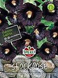 Schwarze Stockrose (Stockmalve) SPERLING's Dunkle Schönheit
