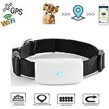 Localizzatore Mini GPS Collare per Pets cani e gatti animali domestici Impermeabile, APP per smarphone e PC Tablet