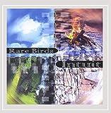 Rare Birds: Intuit (Audio CD)