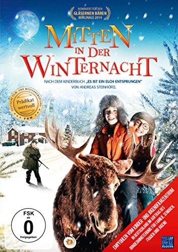 Mitten in der Winternacht (nach dem Roman