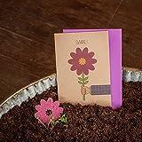 Dankes Karte - Klappkarte mit Blumen - mit eingearbeiteten Wildblumensamen - Dankeskarte für alle Anlässe