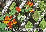 Heil- und Küchenkräuter (Wandkalender 2019 DIN A2 quer): Heilkräuter und Küchenkräuter im Garten (Monatskalender, 14 Seiten ) (CALVENDO Natur)