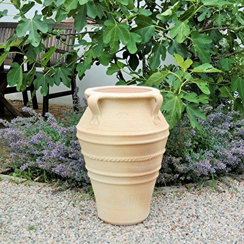 Kreta Keramik handgefertigte terracotta Amphore mit Henkel, absolut frostfest, tolles Pflanzgefäß für Innen sowie Garten und Terrasse, Datura 50 cm
