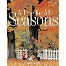 A Tree for All Seasons (Avenues)
