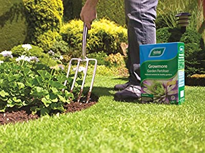 Westland Growmore Garden Fertiliser