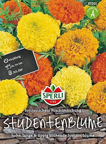 Sperli-Samen Studentenblumen Sonnenschein Prachtmischung