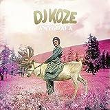 Songtexte von DJ Koze - Amygdala