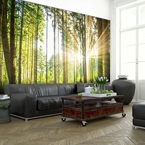decomonkey | Fototapete Wald grün 350x245 cm | VLIES TAPETE | moderne Wanddeko | Riesen Wandbild | Design |Fototapeten | Wandtapete | Landschaft Baum Bäume Natur | modern FOB0083a73XL