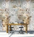 Vlies Foto Tapete Wandbild Maschendraht Bruchstein Ziegelstein Mauer beige grau 200x300cm DI2039