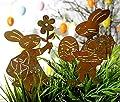 2er SET Gartenstecker Hasenpaar Mädchen und Junge Rost Deko Design (Beetstecker) Lustig von Unbekannt - Du und dein Garten
