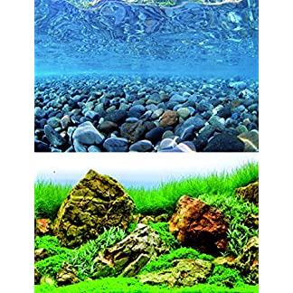 Wave Double Background Vision Blister, 45 X 100 cm 7