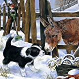 'Country Companions' Border Collie and Donkey 10 pack of small square Christmas cards