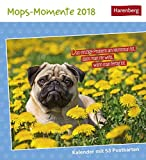 Mops-Momente - Kalender 2018: Kalender mit 53 Postkarten