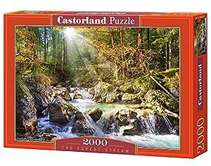 Castorland The Forest Stream 2000 pcs Puzzle - Rompecabezas (Puzzle Rompecabezas, Paisaje, Niños y Adultos, Niño/niña, 9 año(s), Interior)