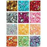 Demarkt 12 Farbe voll Fünf-spitzer Stern Pailletten Nageldesign Glitter Nail Art