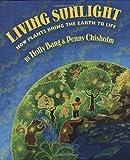 Molly Bang Libri di scienza della Terra per ragazzi