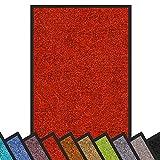 Schmutzfangmatte Rhine | Öko-Tex Standard 100 | waschbare & extra leistungsstarke Fußmatte | Sauberlaufmatte mit Rutschfester Rückseite | Türmatte in vielen Größen & Farben (90x300 cm, Rot)