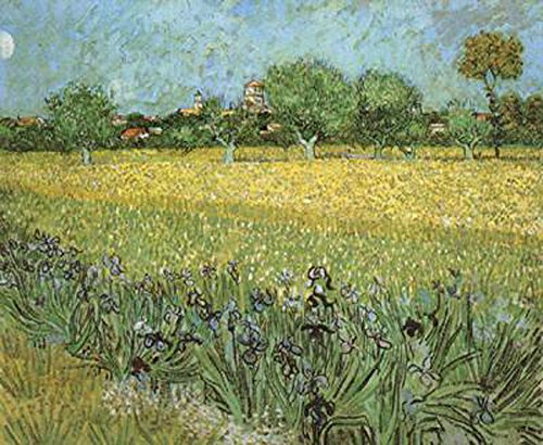 View of Arles with Irises in the Foreground,Vincent Van Gogh,54x65cm -