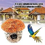 Corwar Birdcage Intrecciato di Paglia Nido di Uccello Stellato Gabbia Ecologica Nido di Uccello Alimentatore di Uccelli Casa degli Uccelli Mangiatoia per Uccelli Nuova Mano Perfect Choice