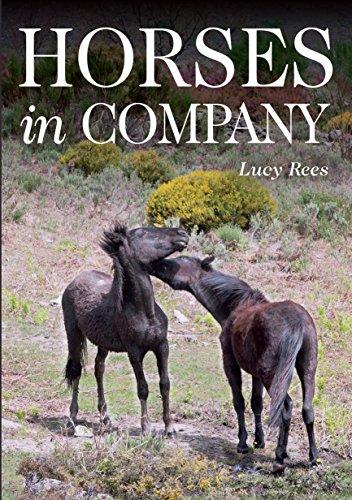 Horses in Company (English Edition)