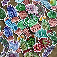 Navy Peony Colorful Cactus Stickers for Your Laptop, Scrapbook, and Daily Planner (31 Pieces)