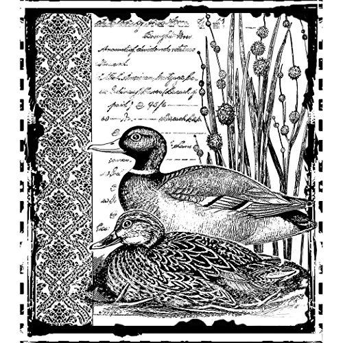 crafty-individuals-unmounted-rubber-stamp-475-inch-x-7-inch-mallard-duck-pair