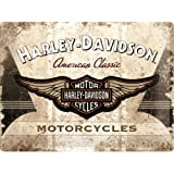 Harley-Davidson Motor Ciclomotores Insignia Logo en el diseño of a piel parche Stiching. en the style of a chaqueta/asiento Icono Americano moto. Chopper. Hog. Visto en películas como fácil Rider. - acero, 30 x 40 cm