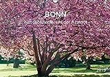 Bonn - Kirschblütenfest in der Altstadt (Wandkalender 2019 DIN A3 quer): Blühende Zierkirschenbäume in der Bonner Altstadt (Monatskalender, 14 Seiten ) (CALVENDO Orte)