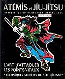 at?mis et jiu jitsu l art d attaquer les points vitaux techniques secr?tes de self d?fense