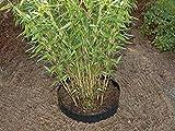 Unbekannt 3m x 0,8 Bambussperre Wurzelsperre Rhizomsperre Bambus Wurzelstop Kunststoff