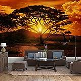 Fototapete Afrika Sonnenuntergang Vlies Tapete Wandtapete - Tapete - Moderne Wanddeko - Wandbilder - Fotogeschenke - Wand Dekoration wandmotiv24 Größe: M 250 x 175 cm - 5 Teile - Vlies