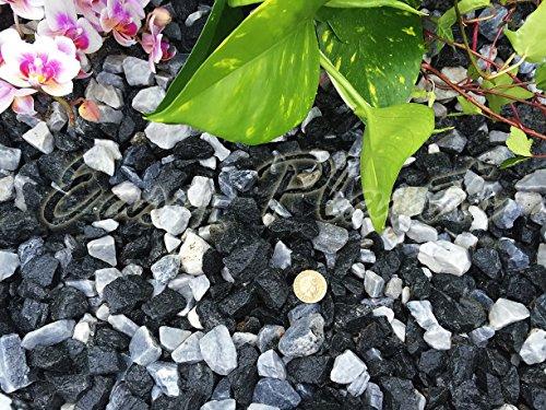 Trucioli di ghiaia pietra di ardesia Deter erbacce da giardino Patio Percorso Plant Topping, colore: nero marmo (14-20mm), 1 kg