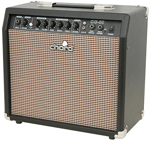 Classic Style Guitar Amplifier | 30W