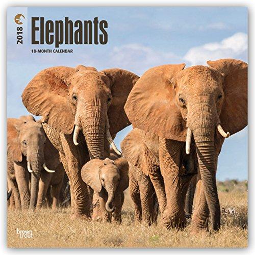 Descargar Libro Elephants - Elefanten 2018 - 18-Monatskalender: Original BrownTrout-Kalender de Browntrout Publishers