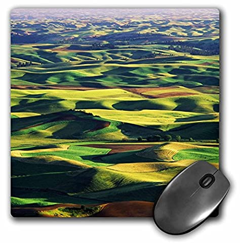 3dRose Contour farming in Palouse farm, Washington USA - US48 AJE0054 - Mouse Pad, 8 by 8 inches