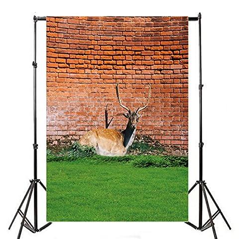 Aaloolaa Photographie arrière-plans rétro Rouge Mur de briques d'élan Renne