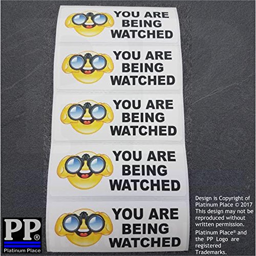 Platinum 5x Sie werden stickers-colour-8030mm-cctv, Kamera, Auto, Sicherheit, Arbeit, Büro, Taxi, Mini, CAB, Bus, Minibus, (Braune Vinyl-sitz)