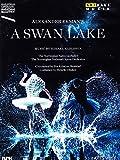 Ekman: A Swan Lake Ballet [Alexander Ekman] [DVD] [2014] [NTSC]