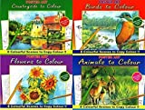 Set Of Four Quality Artist Paint & Colouring Books;Each book is a4 size and contains eight inspirational pictures printed on thick quality paper stock for you to complete;Gives a guide to colours and techniques by having a completed colour pictur...