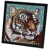 Obras de Arte. Mosaico del Tigre ,con