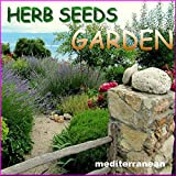 Portal Cool Wildem Fenchel 1000 Samen Foenoc.: Kräutersamen Mediterranean Garden 33 Sorten Aromatische Heil Gewürze Pflanzen