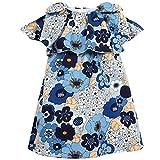 Chloe Dress Blue 12M