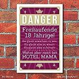 Schild Retro Vintage Geburtstag Freilaufende 18 Jährige Hotel Mama Alu-Verbund 300 x 200 mm