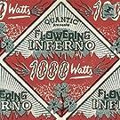1000 Watts (2lp+Mp3) [Vinyl LP]