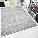 Teppich Hochwertiger Schlaf Wohnzimmer Grau Modern Dichter Hoher Flor Mehrfarbige Melierung mit Used Optik 120x170 cm