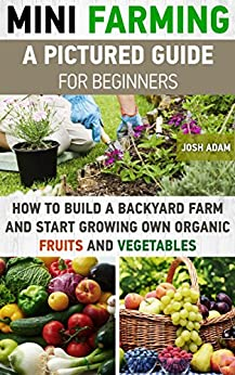 Mini farming a pictured guide for beginners how to build - How to start a mini garden ...