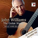 Various: the Guitar Master