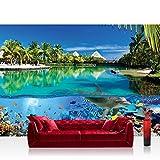 Fototapete 368x254 cm PREMIUM Wand Foto Tapete Wand Bild Papiertapete - Tiere Tapete Delfin Fische Korallen Tiere Meer Palme Strand Hütten blau - no. 2044